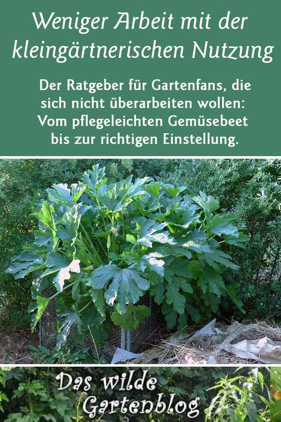 Ratgeber im Gartenblog: Gärtnern mit weniger ARbeit
